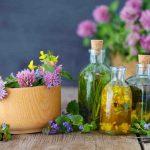 Quelle est la plante la plus Anti-inflammatoire ?