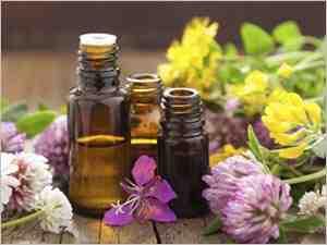 Comment prendre les huiles essentielles de Ravintsara?