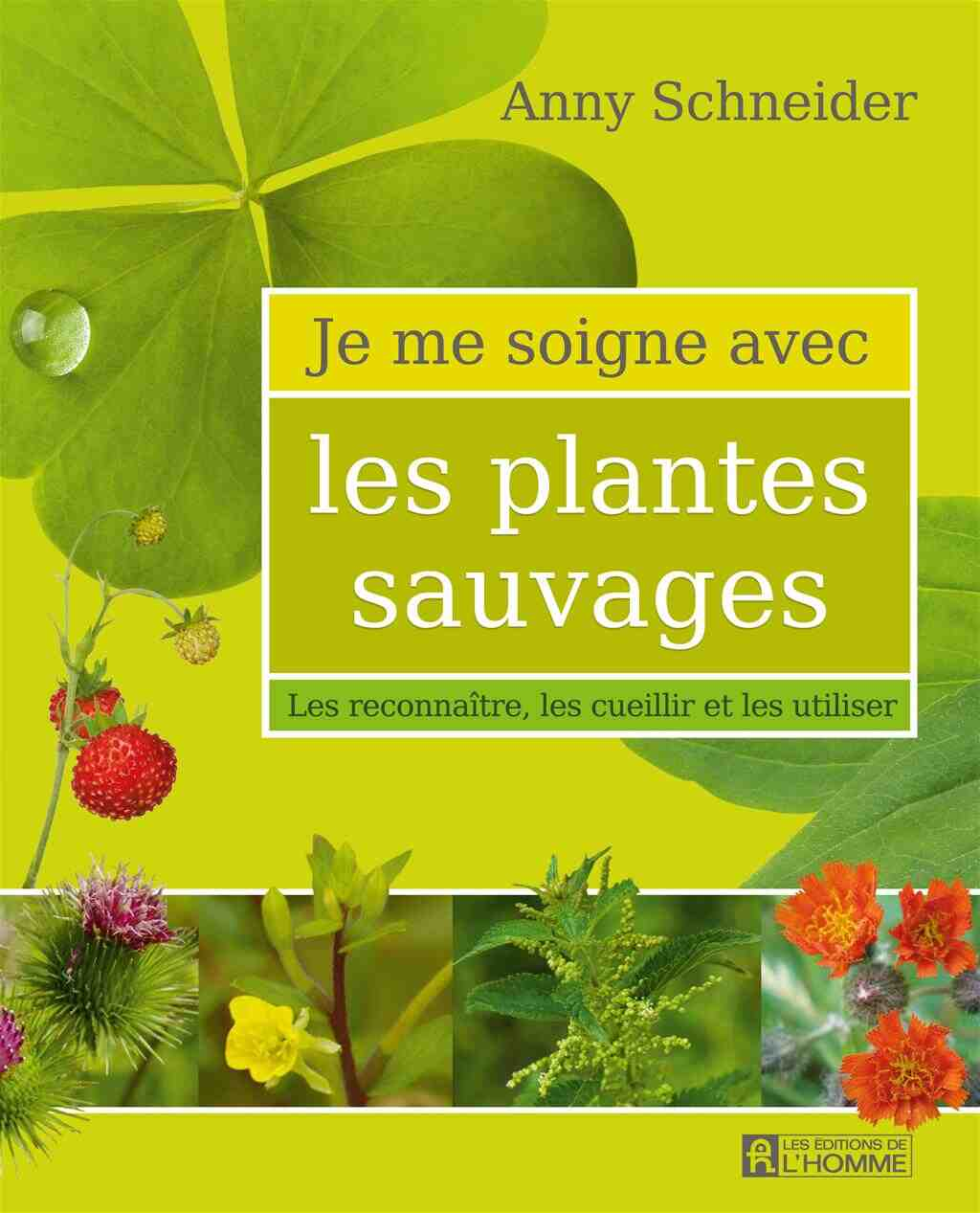Quelles plantes sont les meilleures pour votre santé?
