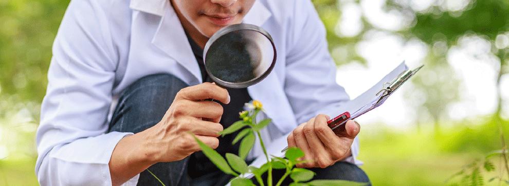 Comment devenir écotoxicologue?
