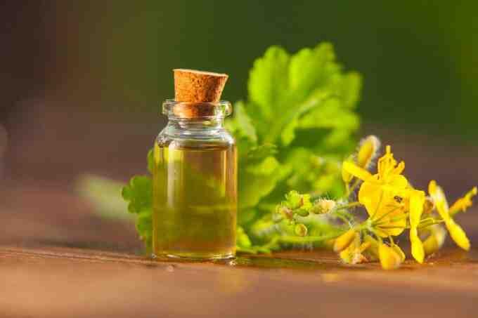 Quelle Homeopathie pour le foie ?