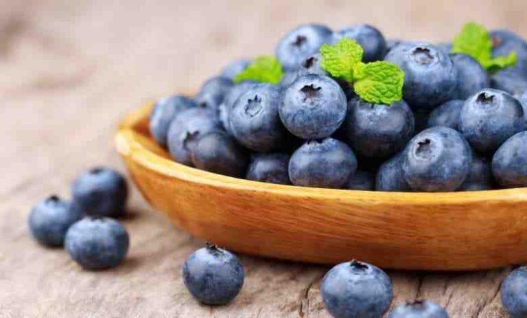 Quels sont les aliments les plus Anti-inflammatoires ?