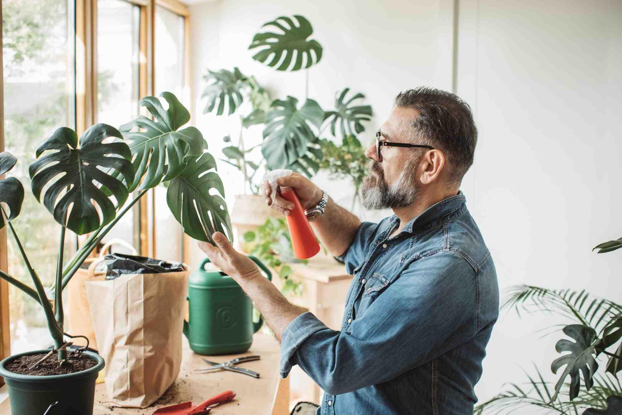 Comment bien prendre soin de ses plantes ?